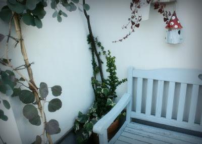 壁つる性植物