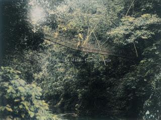 jembatan sungai lae renun di tumpak raja