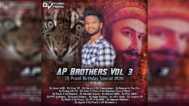AP BROTHERS VOL 3 DJ PRANIL B'DAY SPL 2K20