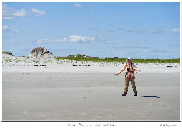 Crane Beach: ... not so much here...