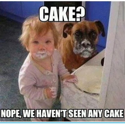 Dog Humor : Cake I did not see any cake
