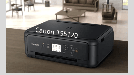 Canon TS5120
