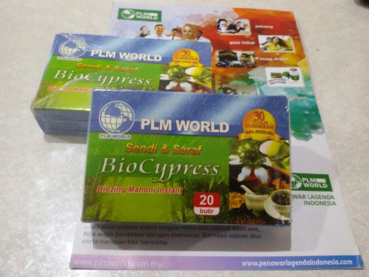 Jual Biocypress Herbal Ampuh Mengobati Sendi Saraf Dan Stroke Bio Cypress Obat Sakit Info Lengkap Hubungi