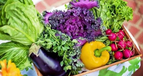 Vitamin Yg Bagus Untuk Ibu Hamil