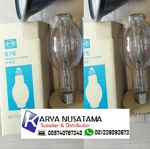 Jual Lampu Eye Iwasaki Flourestcent 400w Lampu Taman di Bojonegoro