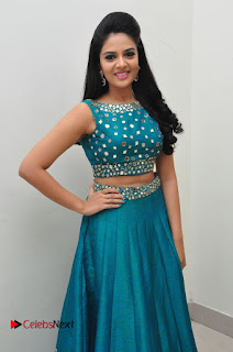Sree Mukhi Pictures at Gentleman Audio Launch  0059