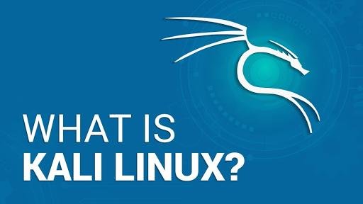 Mengenal Apa itu Kali Linux : Sejarah, Kelebihan dan Fiturnya
