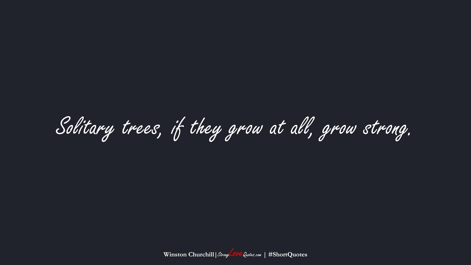 Solitary trees, if they grow at all, grow strong. (Winston Churchill);  #ShortQuotes