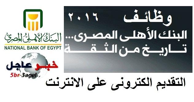 """وظائف البنك الاهلى المصرى 2016 """" لخريجى الكليات """" والتقديم الكترونى من خلال الانترنت"""