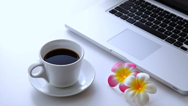 jak pozycjonować stronę, jak pozycjonować bloga, jak optymalizować