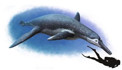 Ditemukan Fosil Monster Laut Purba Seukuran Bus
