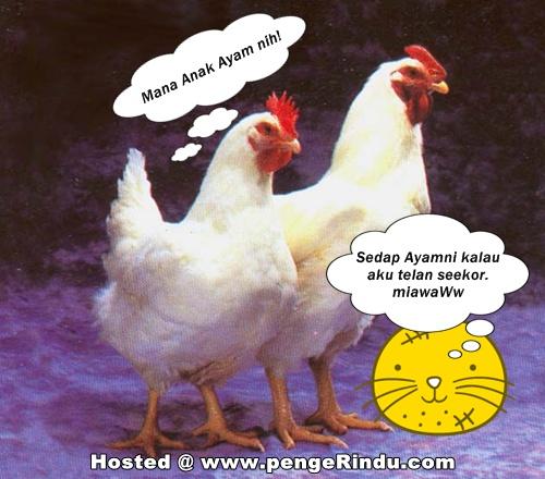 Maksud Peribahasa Hangat Hangat Tahi Ayam