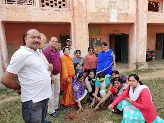 tree-planting-sveep-jamshedpur