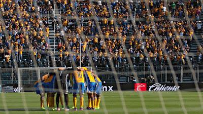 Tigres invadirán el Estadio Azul