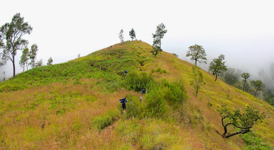 Regret Hill altitude 2000 m National Park of Mount Rinjani