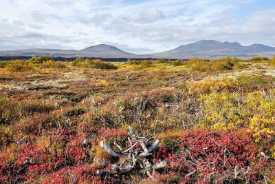 Octobre en Islande