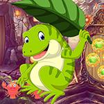 Games4King -  G4K Obstinate Frog Escape