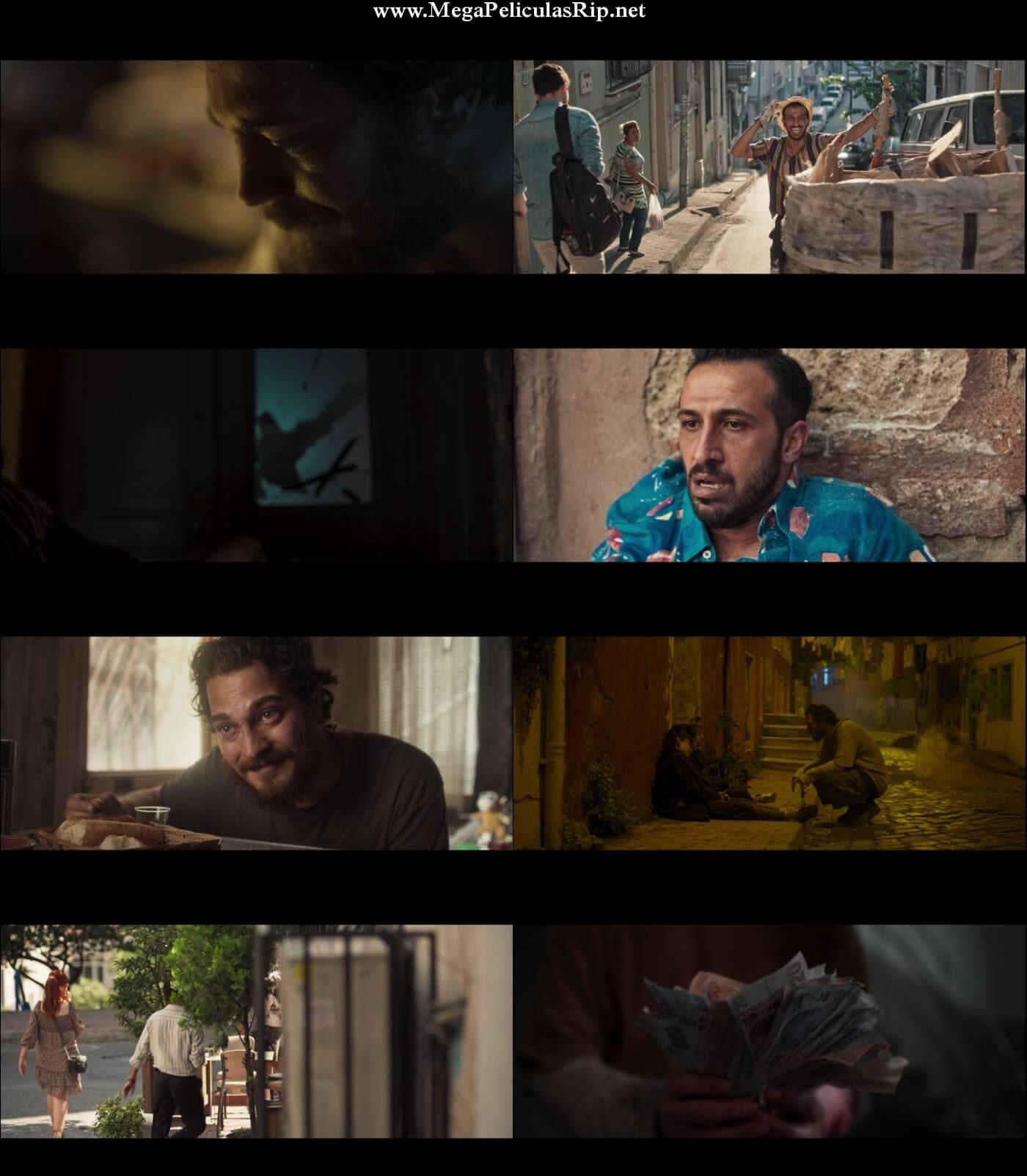 Vidas De Papel 1080p Latino