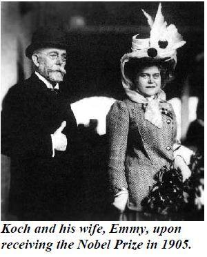 Robert Koch Hedwig Freiberg