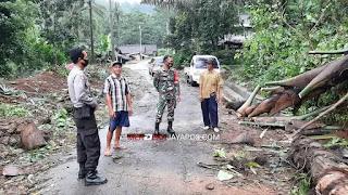 Hujan Deras Sebabkan Tumbangnya Pohon Ke Jalan Dan Mengenai Kabel Listrik