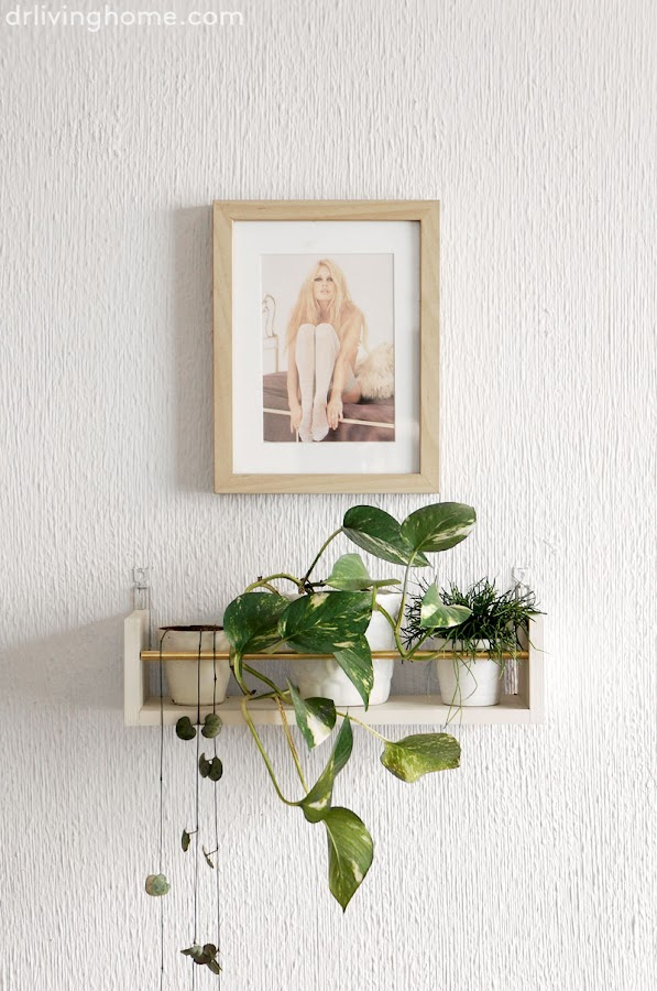 Estante diy para decorar con plantas