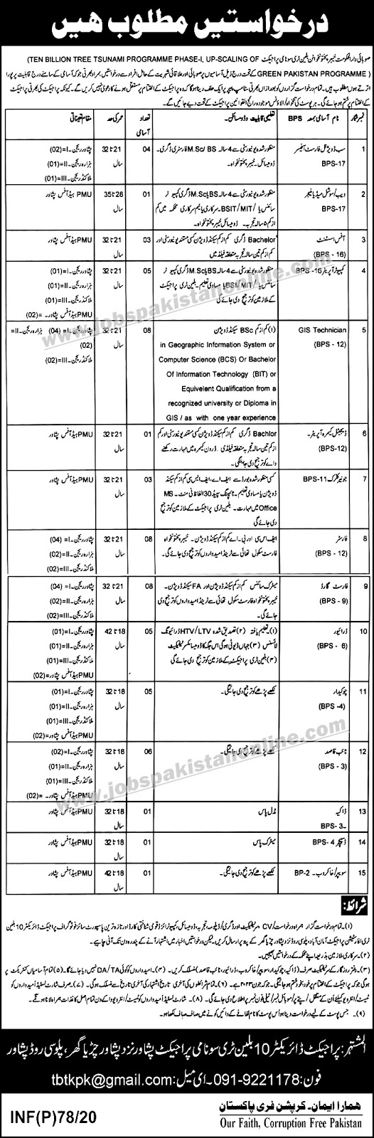 Urgent Jobs In Peshawar In Ministry Of Climate Change Khyber Pakhtunkhwa | Apply Now