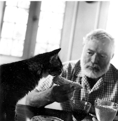 Hemingway and his pussy cat