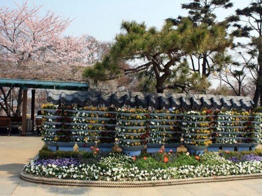 /**جمال الطبيعة في فصل الربيع**\ spring_season_japan_