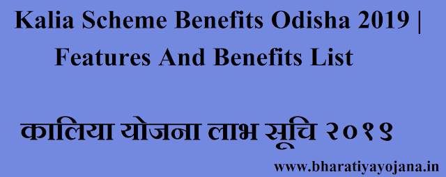 Kalia Scheme Benefits Odisha 2019 | Features And Benefits List