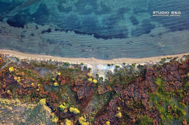 24 Οκτωβρίου: Ημέρα Μεσογειακών Ακτών