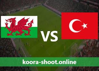 بث مباشر مباراة تركيا وويلز اليوم بتاريخ 16/06/2021 يورو 2020