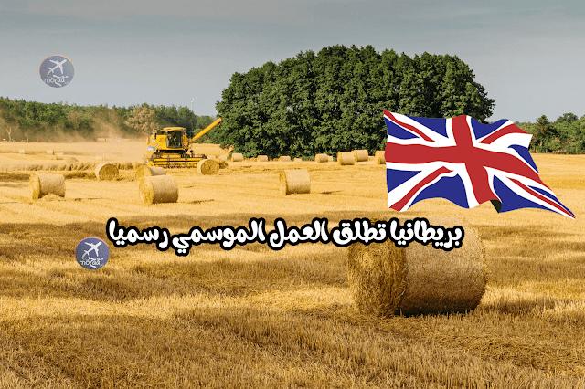 بريطانيا تطلق برنامج العمل الموسمي للعمل في مزارع بريطانيا