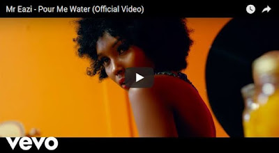 Mr%2BEazi - VIDEO: Mr Eazi – Pour Me Water (Official)