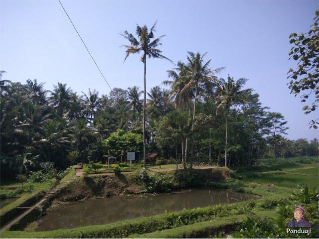 Situs Sukosewu