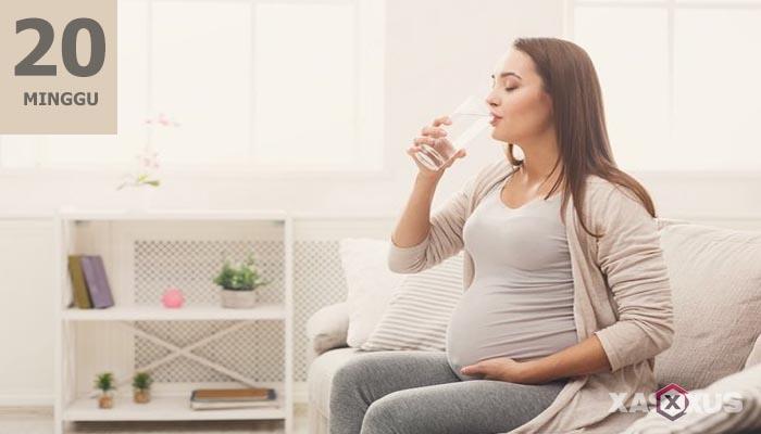 15 Fakta Kehamilan dan Janin Usia 20 Minggu Yang Harus Diketahui Oleh Ibu Hamil