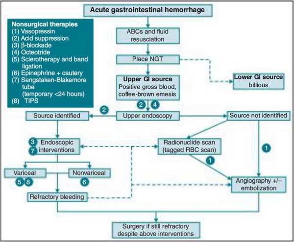 Acute gastrointestinal hemorrhage