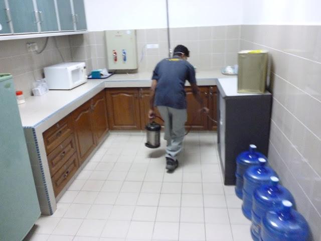 شركة مكافحة حشرات بالمدينة المنورة والقضاء عليها في الحال