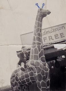 model giraffe