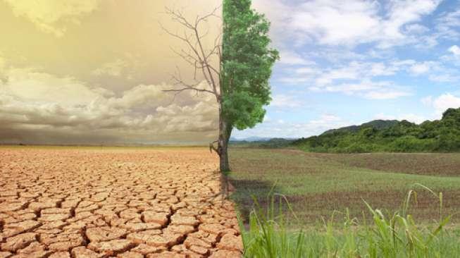 Ada-ada Saja! 6 Pemuda Portugal Gugat 33 Negara Karena Sebabkan Perubahan Iklim Dunia