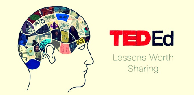 TED-Ed Platform for Creating Interactive Lessons