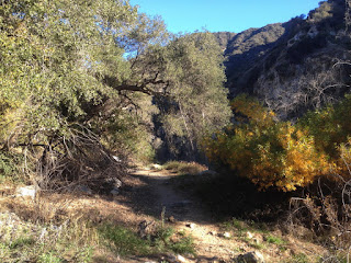 Heading north on Fish Canyon Trail, Angeles National Forest