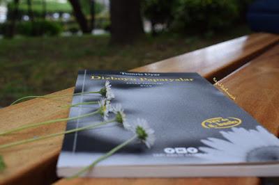 kitap yorumu, kağıt salıncak, yky