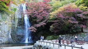 Osaka Japan travel - The Most Beautiful Park in Osaka Japan