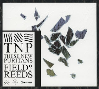 These New Puritans - Field of Reeds