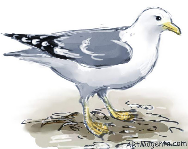 Gull is a bird painting by artist and illustrator Artmagenta