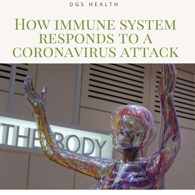 immunity system and virus attack
