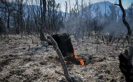 Η γενική εικόνα των πυρκαγιών