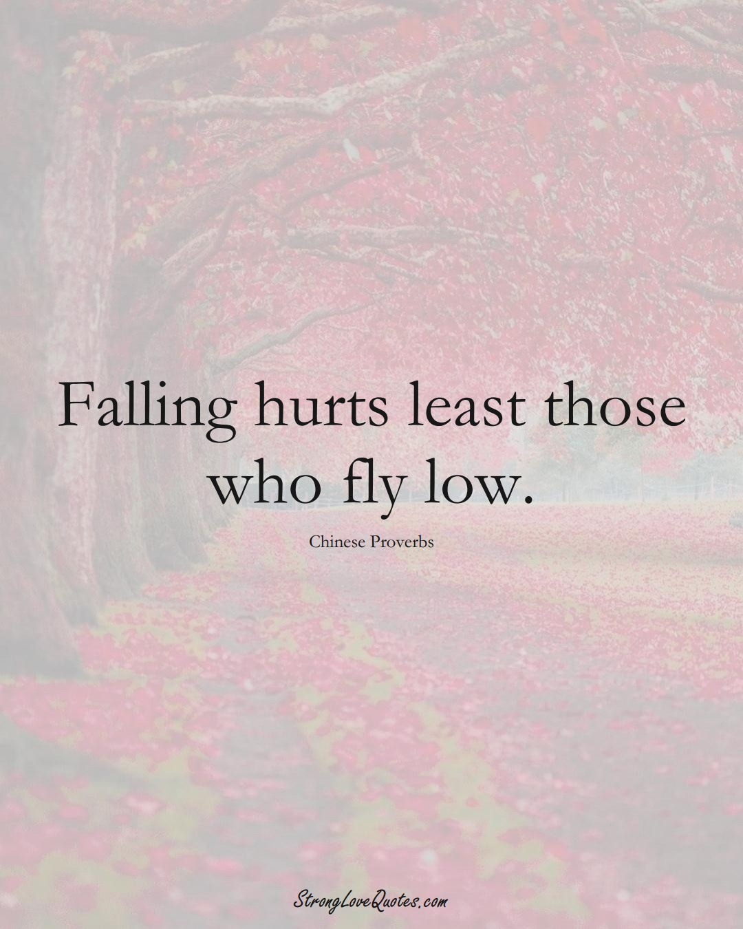 Falling hurts least those who fly low. (Chinese Sayings);  #AsianSayings