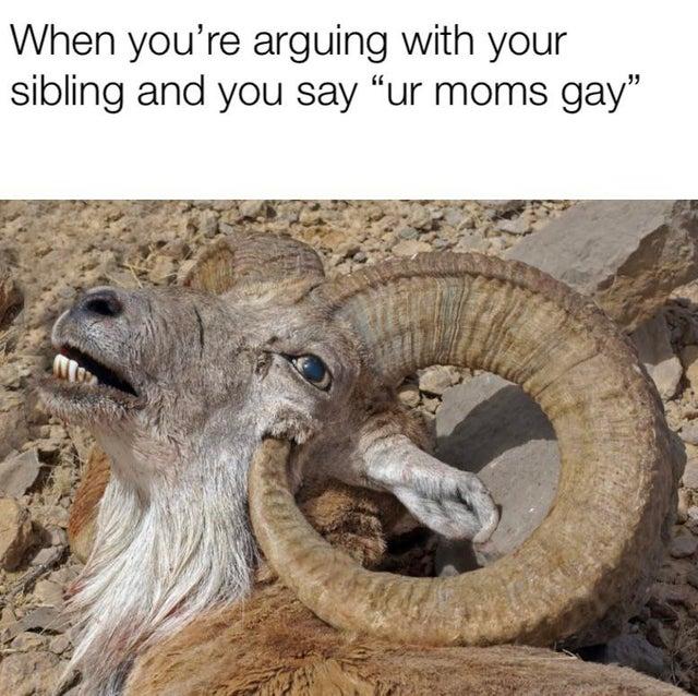 r/creepy is full of untapped meme formats