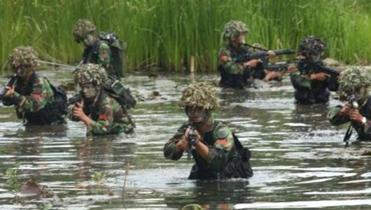 Pasukan Elite TNI Baku Tembak Dengan KKB di Papua, 1 Terluka